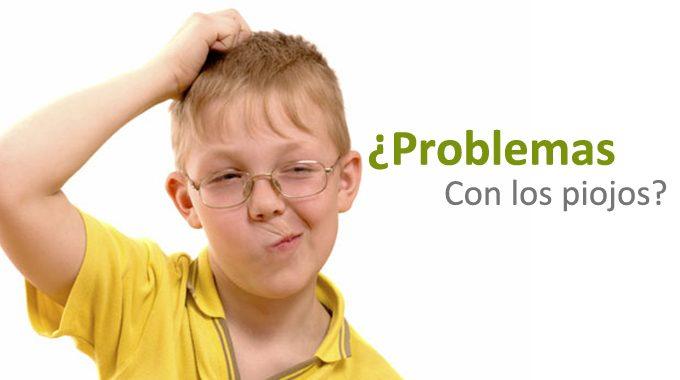 La Pediculosis O Presencia De Piojos En La Cabeza.
