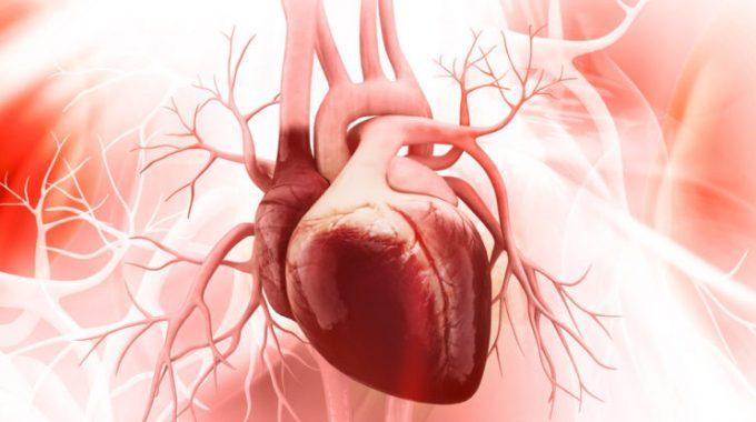 Día Mundial Del Corazón: ¿Cómo Cuidarlo?